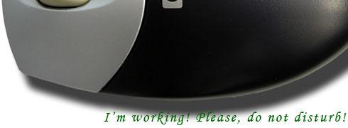 I am working, please, Do Not Disturb!
